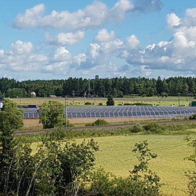 Suuri aurinkosähköpuisto käyttöön Loimaalla