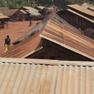 WWF: Energiamurros tapahtuu nyt
