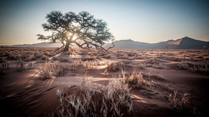 2016 on varmistumassa mittaushistorian kuumimmaksi