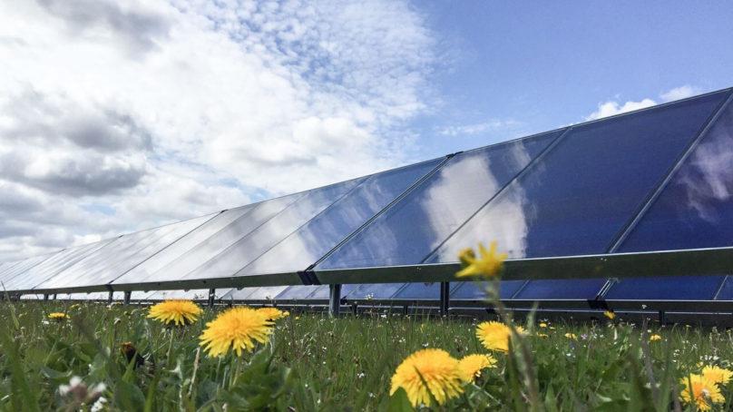 Savo-Solarille on myönnetty Tekesin projektirahoitusta