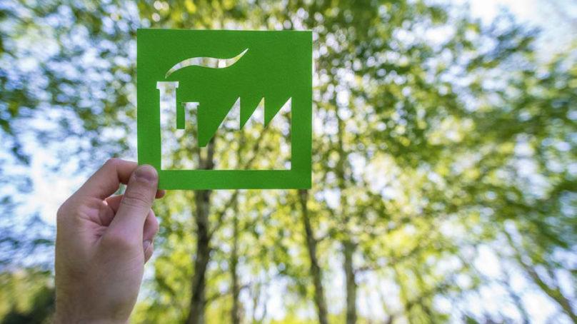 Suomen kansantalous hyrräämään biotaloudella – VTT laati kehityspolut vuoteen 2050