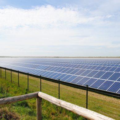Aurinkoenergia paikkaa kun hiili- ja ydinvoima pettää